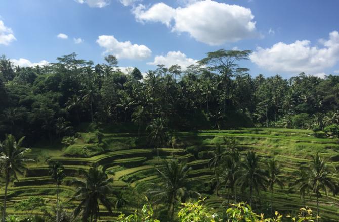 Bezienswaardigheden in Bali